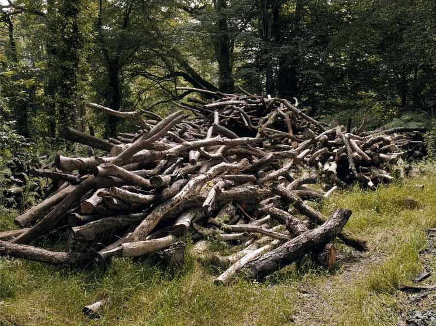 Logs2w